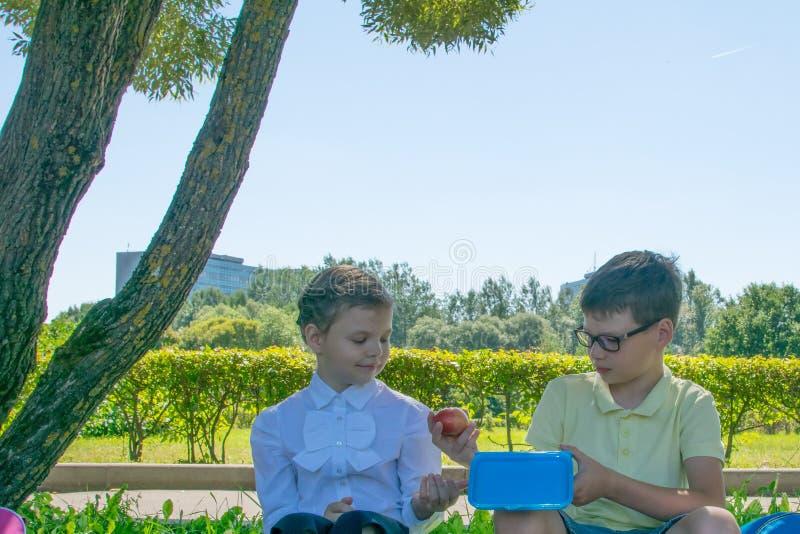 男孩给一个苹果休息在新鲜空气的女孩 免版税库存图片
