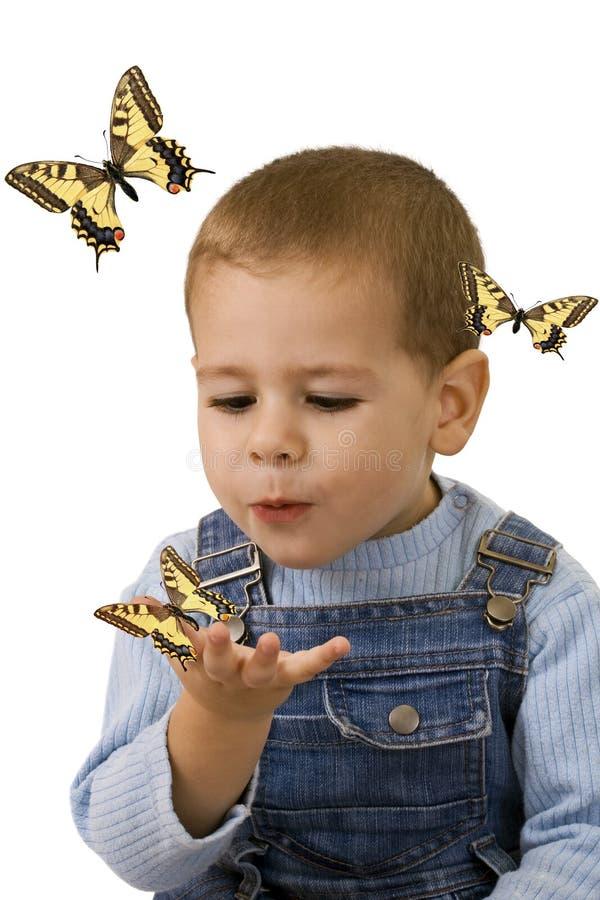 男孩蝴蝶查找 图库摄影