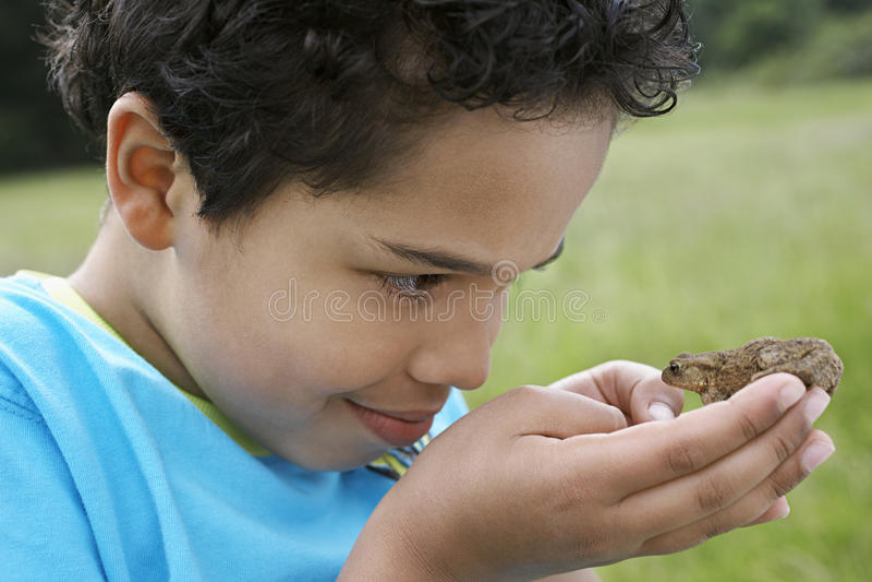 男孩观察蟾蜍户外 免版税库存照片