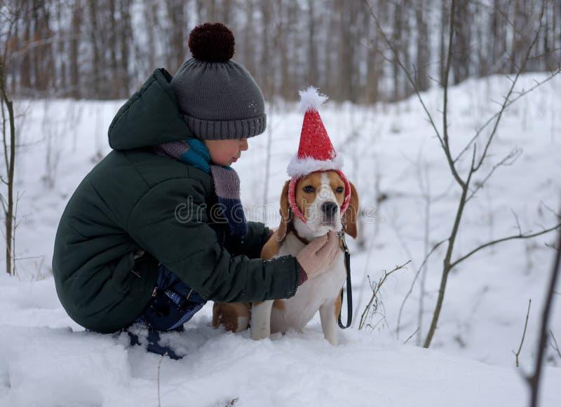 男孩走与小猎犬的七岁 免版税库存照片