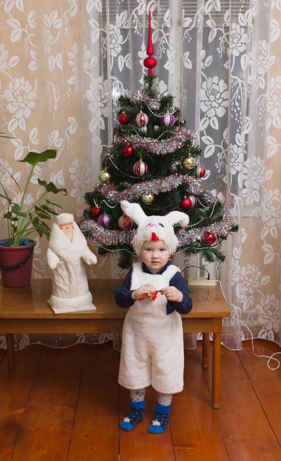 男孩野兔 库存照片