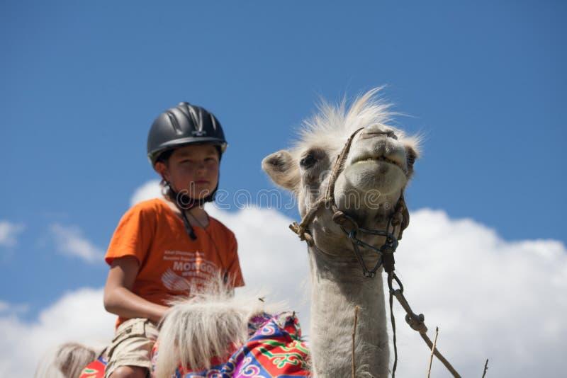 男孩骑马横跨Bactrian 库存照片