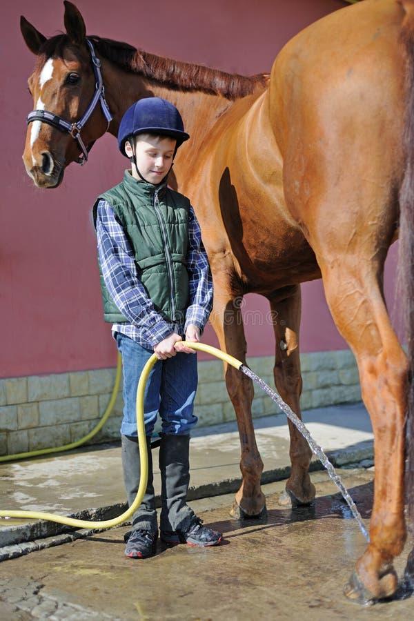 男孩洗涤他的马 免版税库存照片