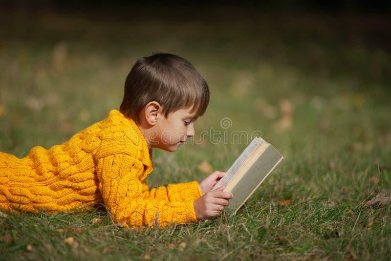 男孩说谎在草的阅读书 免版税库存照片
