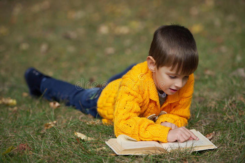 男孩说谎在草的阅读书 免版税库存图片