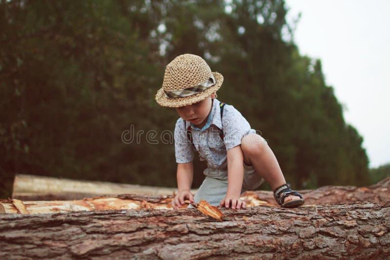 男孩继续采伐 免版税库存图片