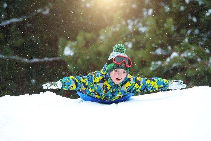 男孩sledding在多雪的森林室外冬天乐趣为圣诞节假期 免版税库存照片