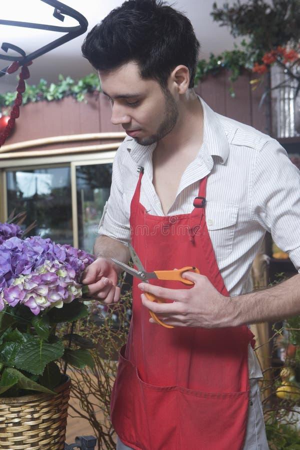 男性卖花人切口八仙花属 免版税库存图片