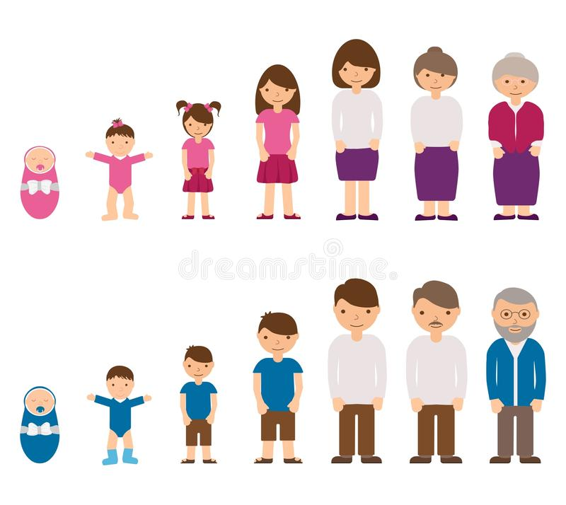 男性和女性角色-婴孩,孩子,少年,年轻人,成人,老人的老化概念 人循环寿命和 向量例证