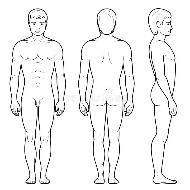 男性图的例证 皇族释放例证