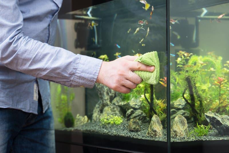 男性手清洁水族馆玻璃 库存照片