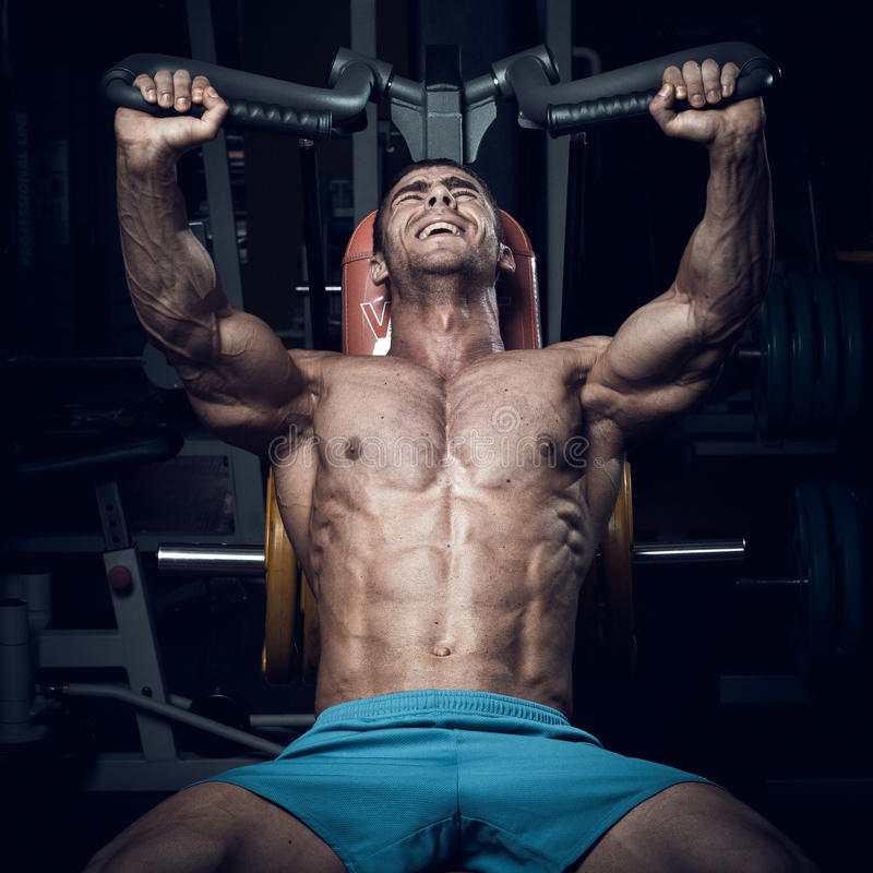 男性爱好健美者,健身模型 免版税库存照片