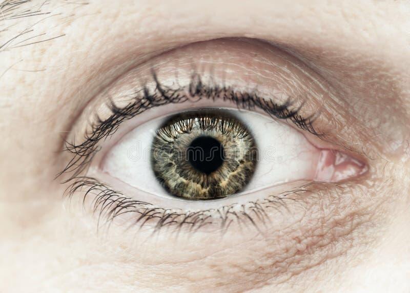 男性眼睛宏指令特写镜头 库存照片