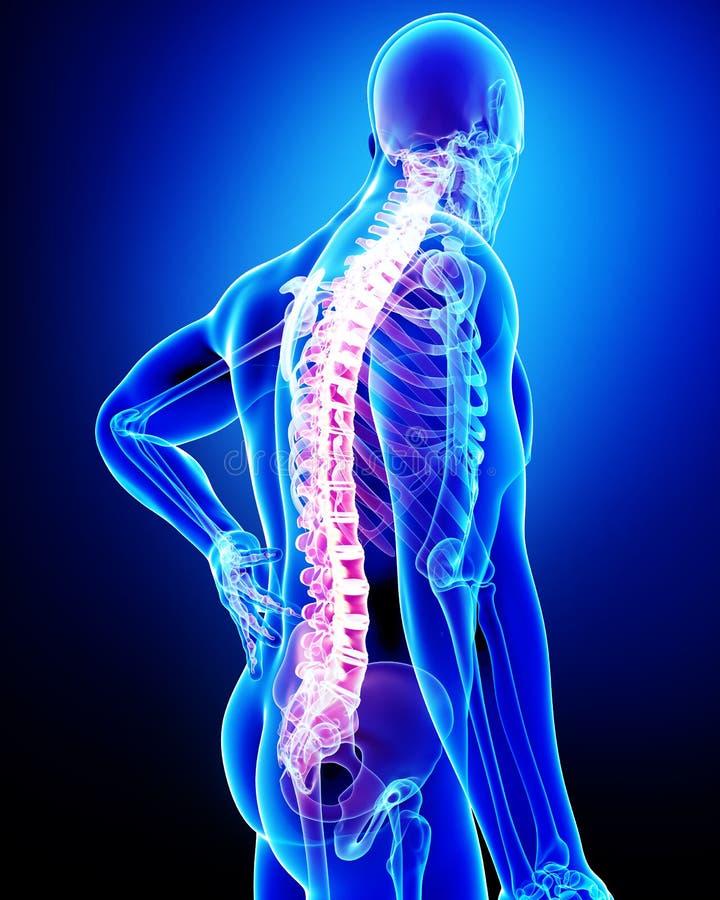 男性背部疼痛 库存例证