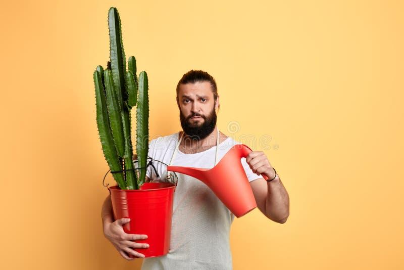 男性英俊的有胡子的黄色背景的卖花人浇灌的房子植物 库存照片