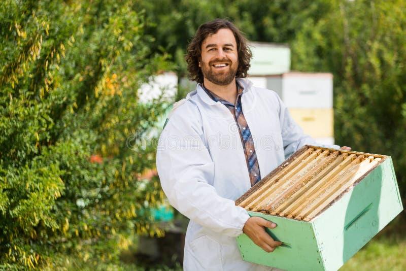 男性蜂农运载的条板箱充分蜂窝 库存图片