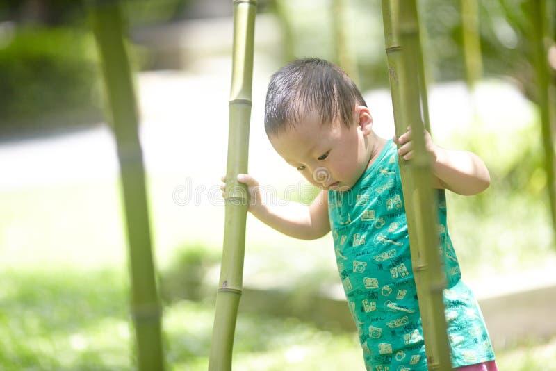 男婴在夏天 免版税库存图片