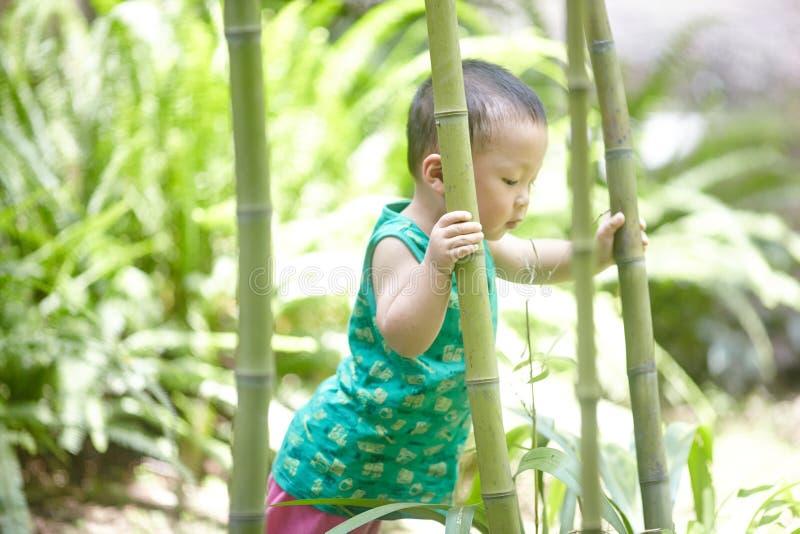 男婴在夏天 免版税库存照片