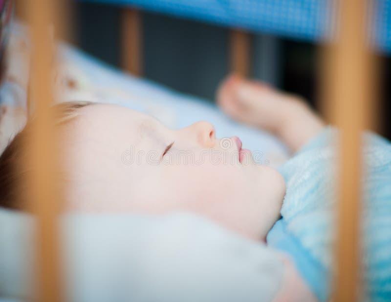 男婴在小儿床睡觉 免版税库存照片