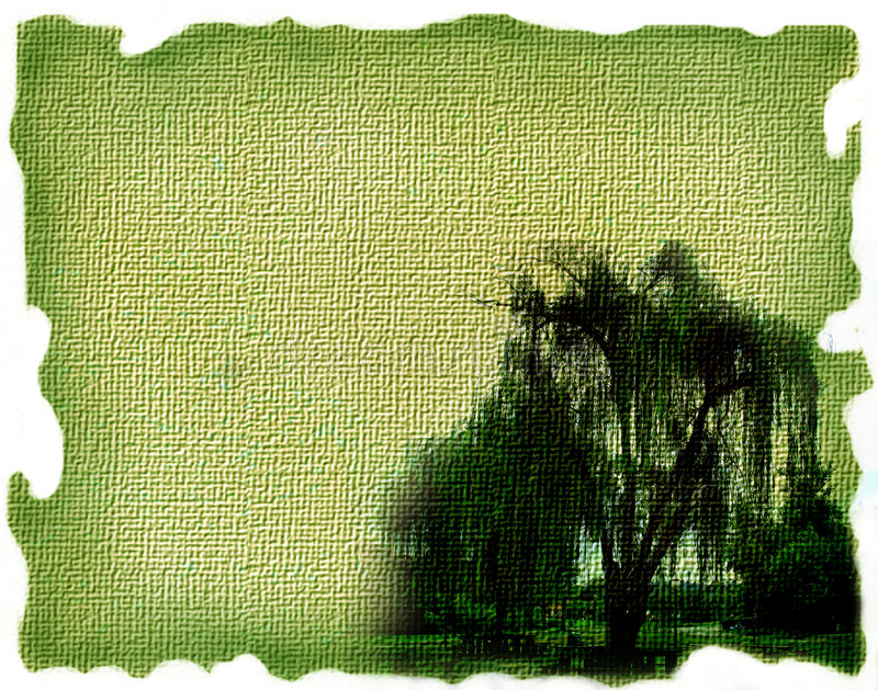 画布绿色 免版税库存图片
