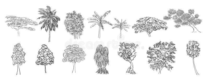 画的套在白色背景的树 皇族释放例证