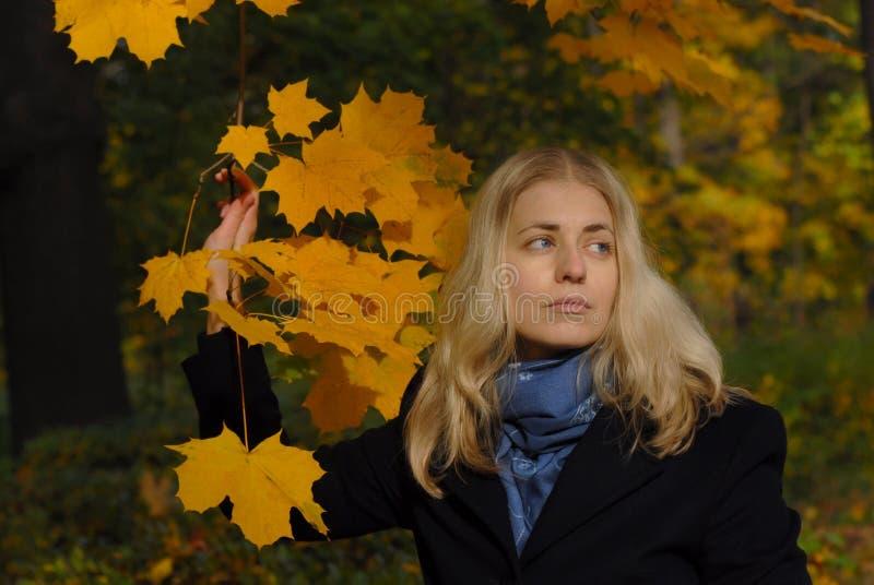 留下槭树妇女黄色 免版税图库摄影