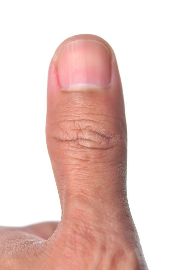 略图手指 免版税库存照片
