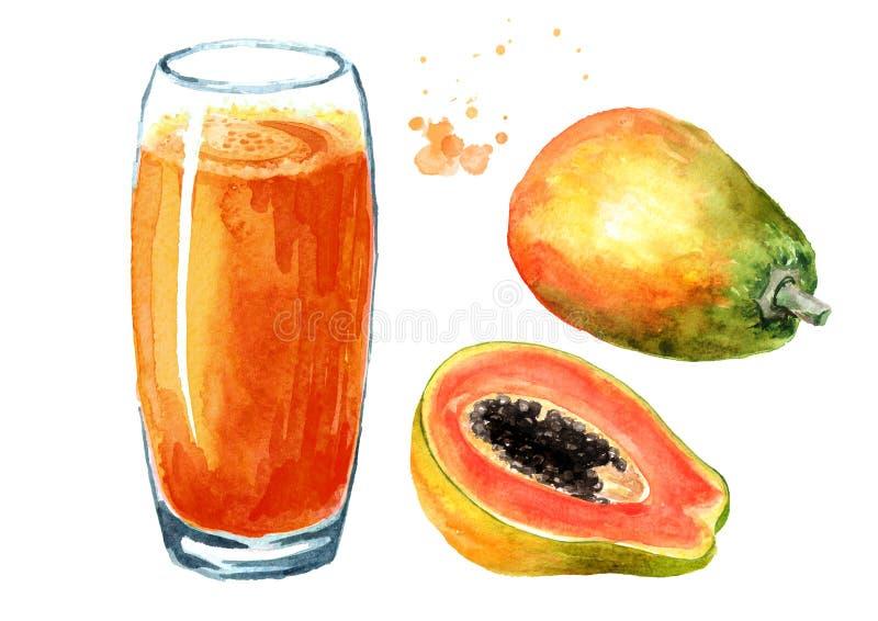 番木瓜圆滑的人用被设置的成熟果子 E 向量例证