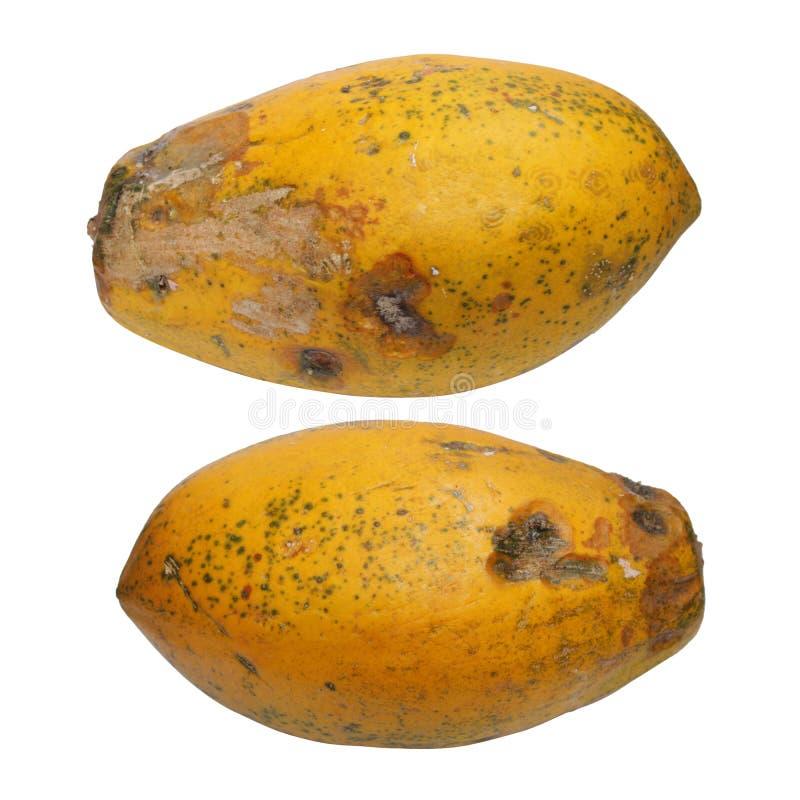 番木瓜被隔绝的照片  r 图库摄影