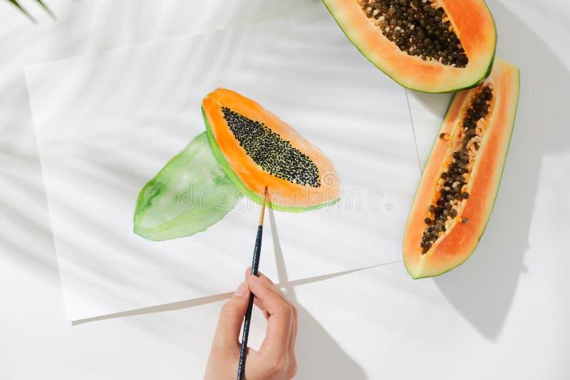 番木瓜 热带夏天概念由番木瓜果子和手图画例证制成 图库摄影