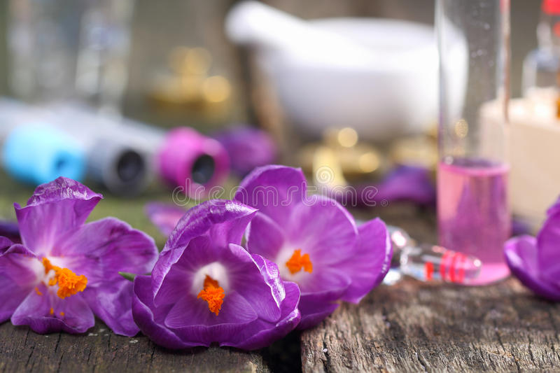 番红花萃取物,自然化妆用品 免版税库存图片
