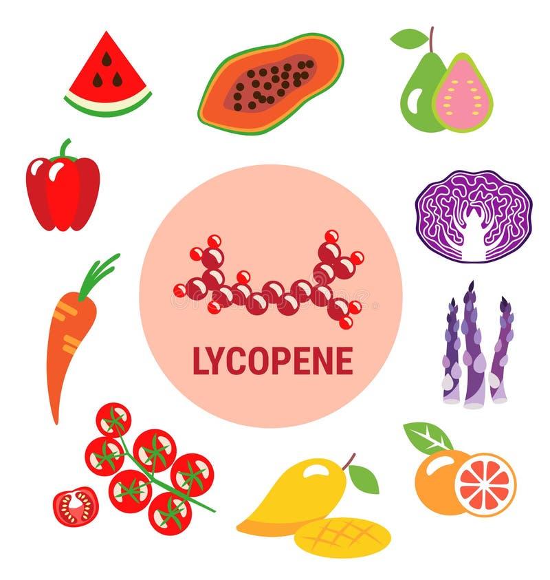 番茄红素的最佳的来源在果子的 向量例证