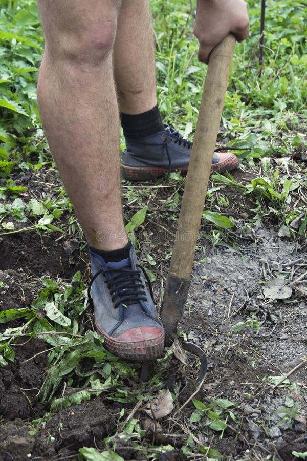 疏松土壤 库存图片