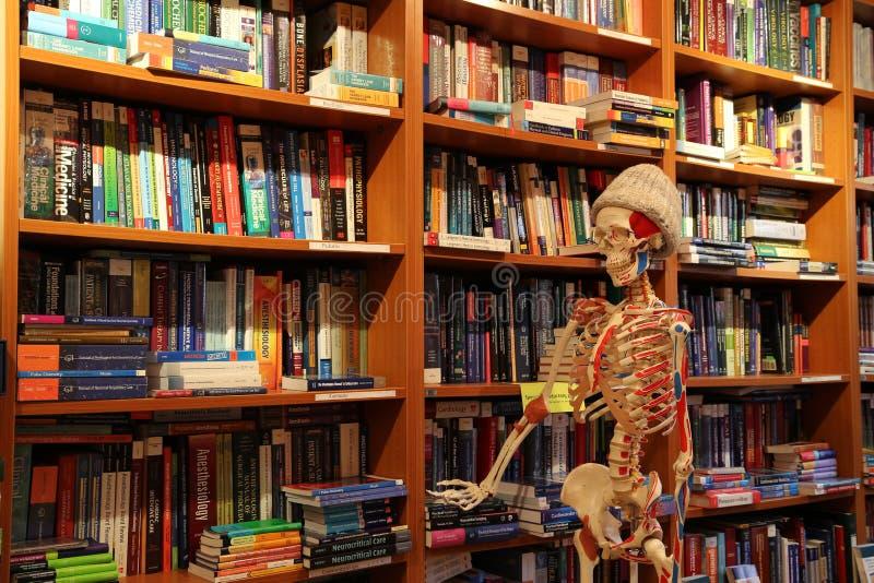 医疗书店和解剖学骨骼 免版税库存照片