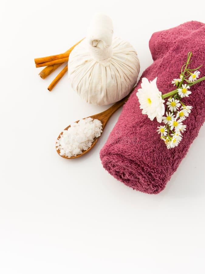 医疗保健盐在白色backgro洗刷芳香疗法被隔绝 免版税库存图片