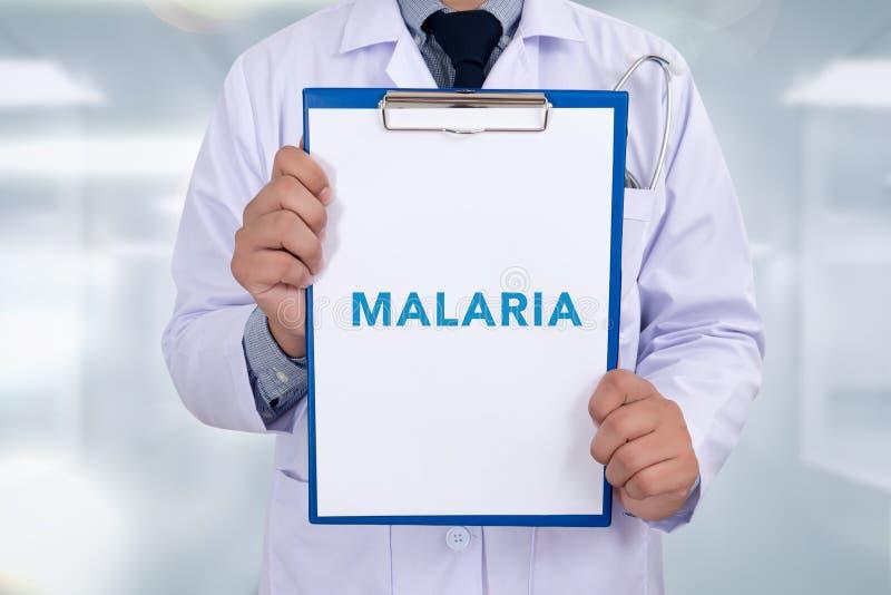 医疗疟疾的概念 库存图片