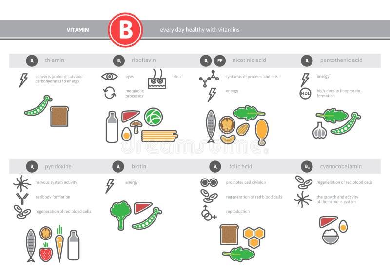 医疗维生素B来源infographics 库存例证