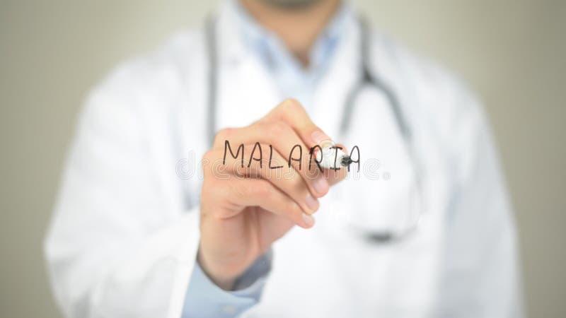 疟疾,在透明屏幕上的医生文字 免版税库存照片