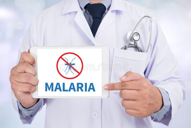 疟疾 图库摄影