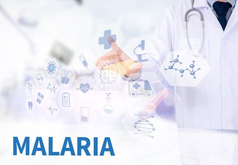 疟疾 免版税库存图片