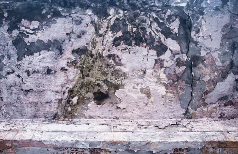 疾病砖墙 库存图片