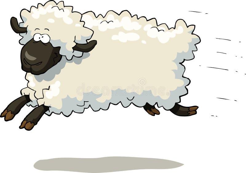 疾驰的绵羊 向量例证