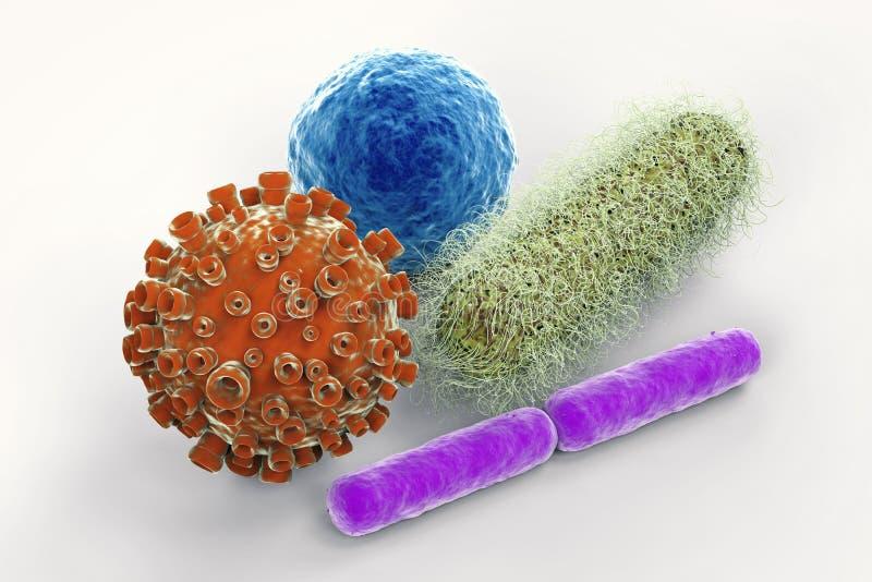 病毒和细菌电池 免版税库存图片
