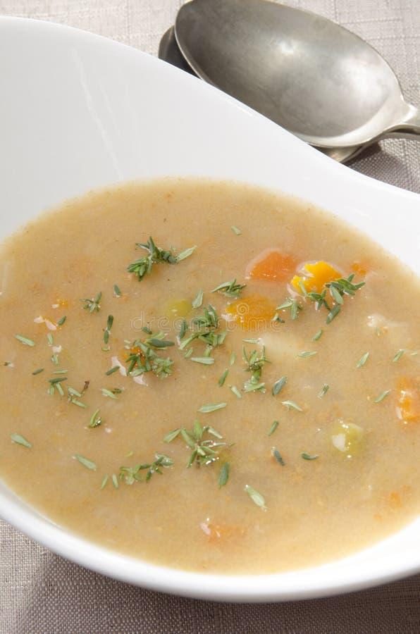 刻痕汤汤用新鲜的麝香草 库存照片