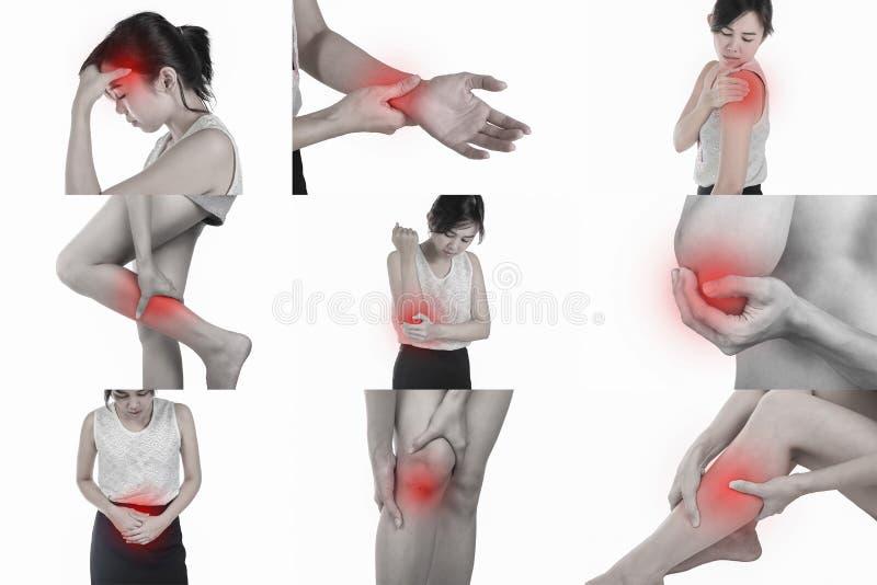 痛苦在白色背景的一个妇女` s身体 框架剪报 库存照片