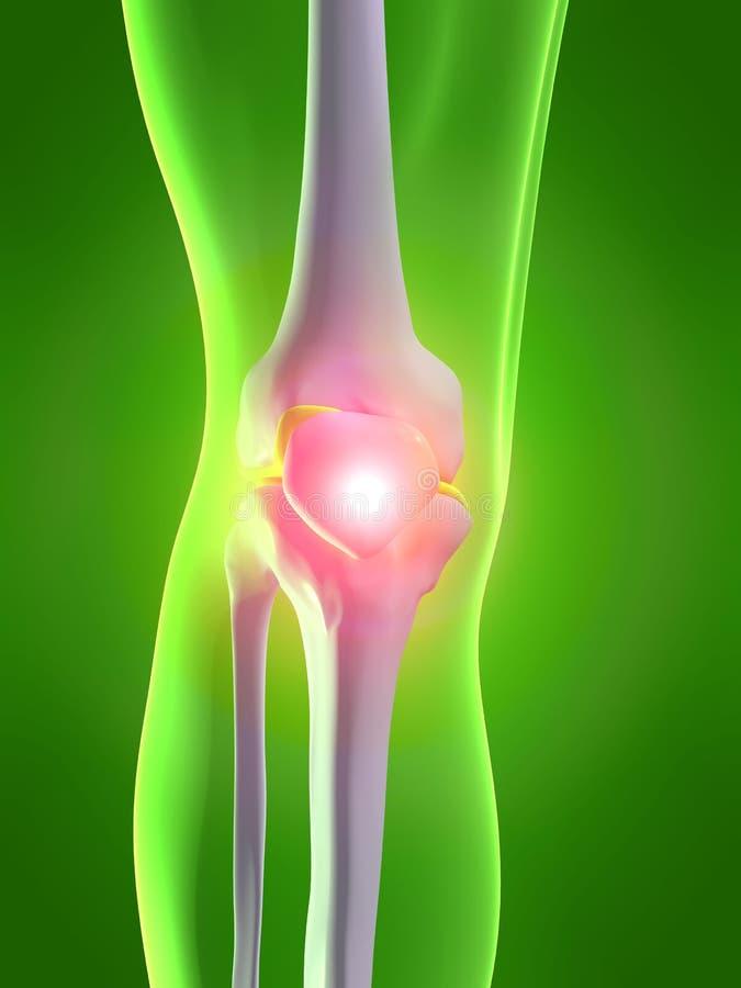 痛苦的膝盖 库存例证