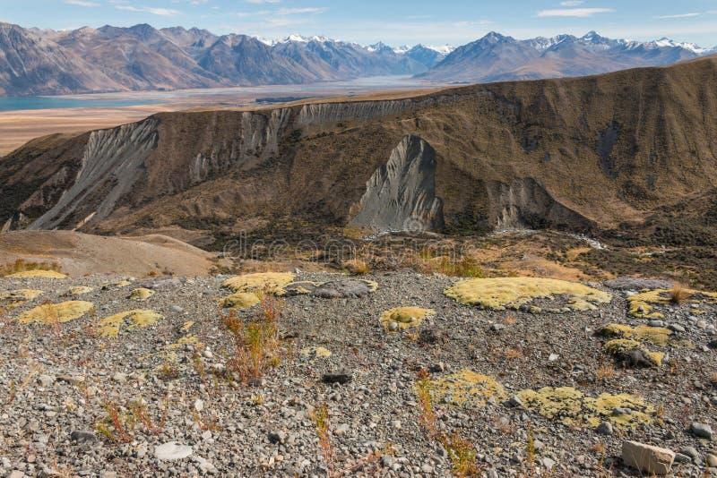 贫瘠倾斜在南阿尔卑斯山 免版税库存照片