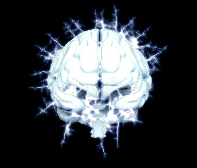 癫痫症概念 皇族释放例证