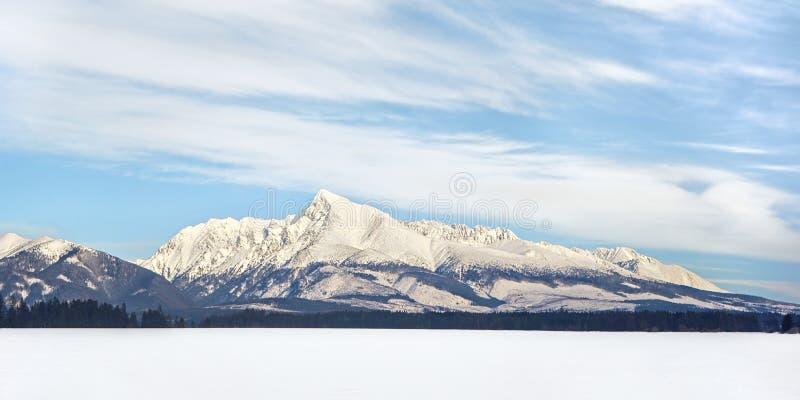 登上斯洛伐克冬天全景的克日万标志 免版税图库摄影