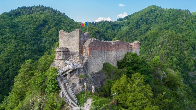 登上的Cetatea被破坏的Poenari堡垒在罗马尼亚 库存图片